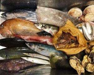 魚進の鮮魚